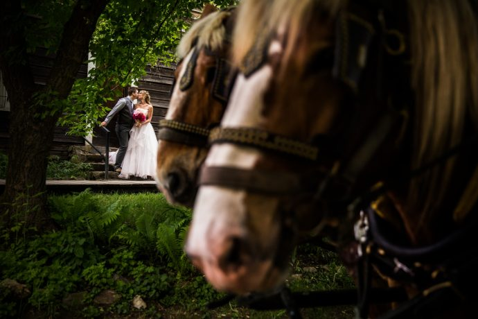 Kelowna Photographer Lori Brown Photography | kelowna horse and carriage rental