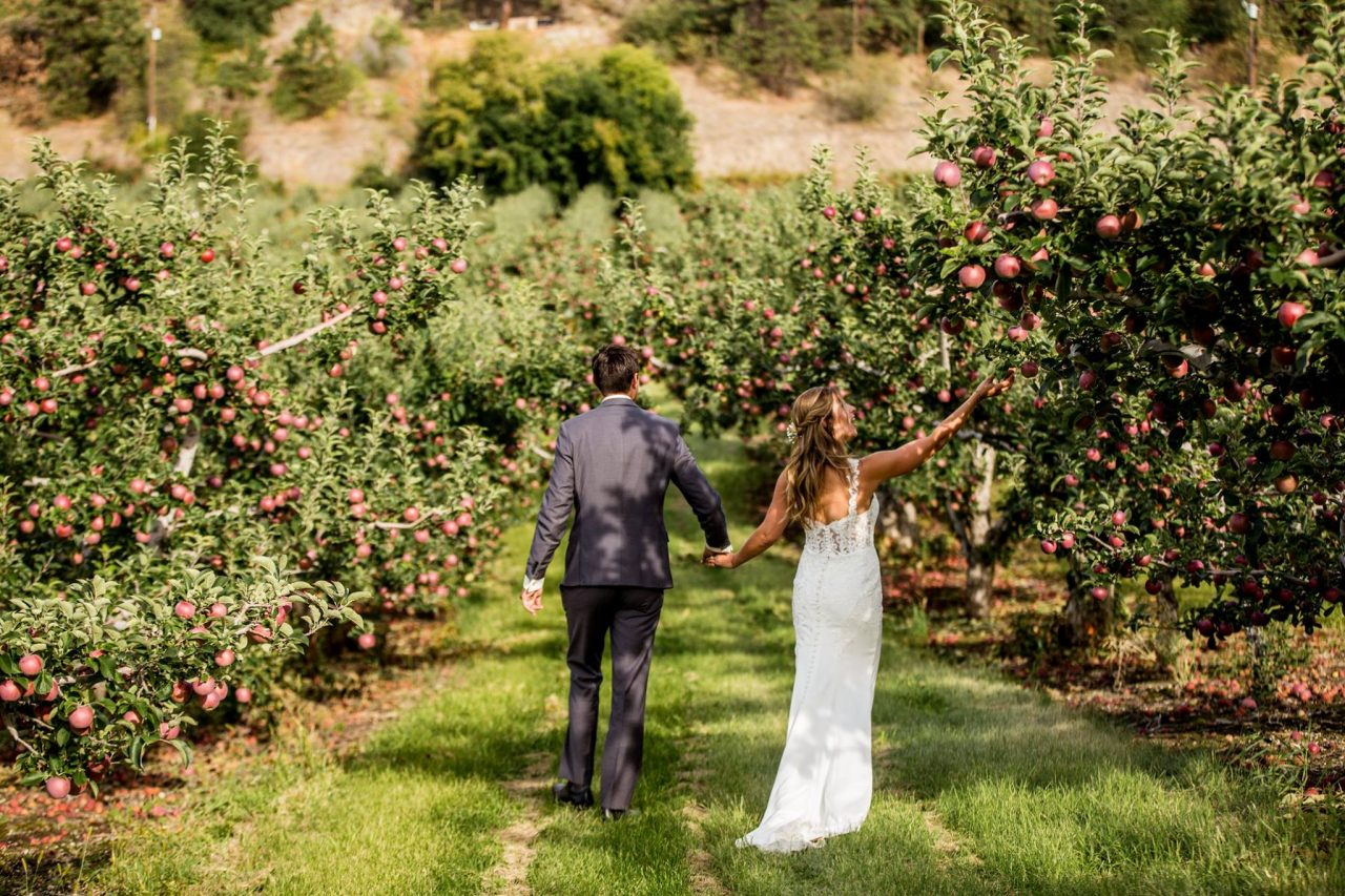 ding photographer portfolio - Okanagan wedding orchard portrait